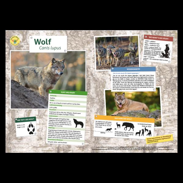 Lernort Natur-Tiertafel DIN A3 Wolf