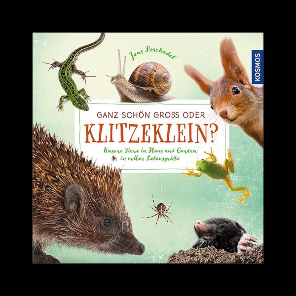 """Kinderbuch """"Ganz schön groß oder klitzeklein?"""""""
